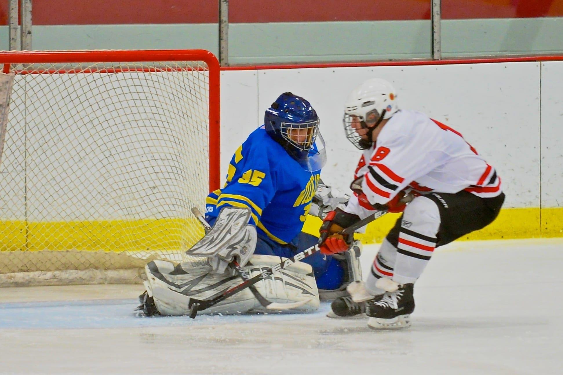 B'ville hockey falls to West Genny, F-M