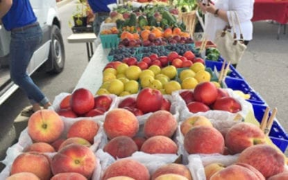 Fayetteville Farmers Market CNY begins spring market May 18