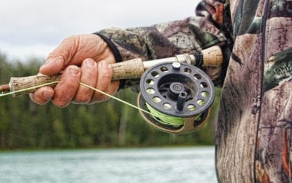 Guest column: Fishing licenses available from Lysander clerk