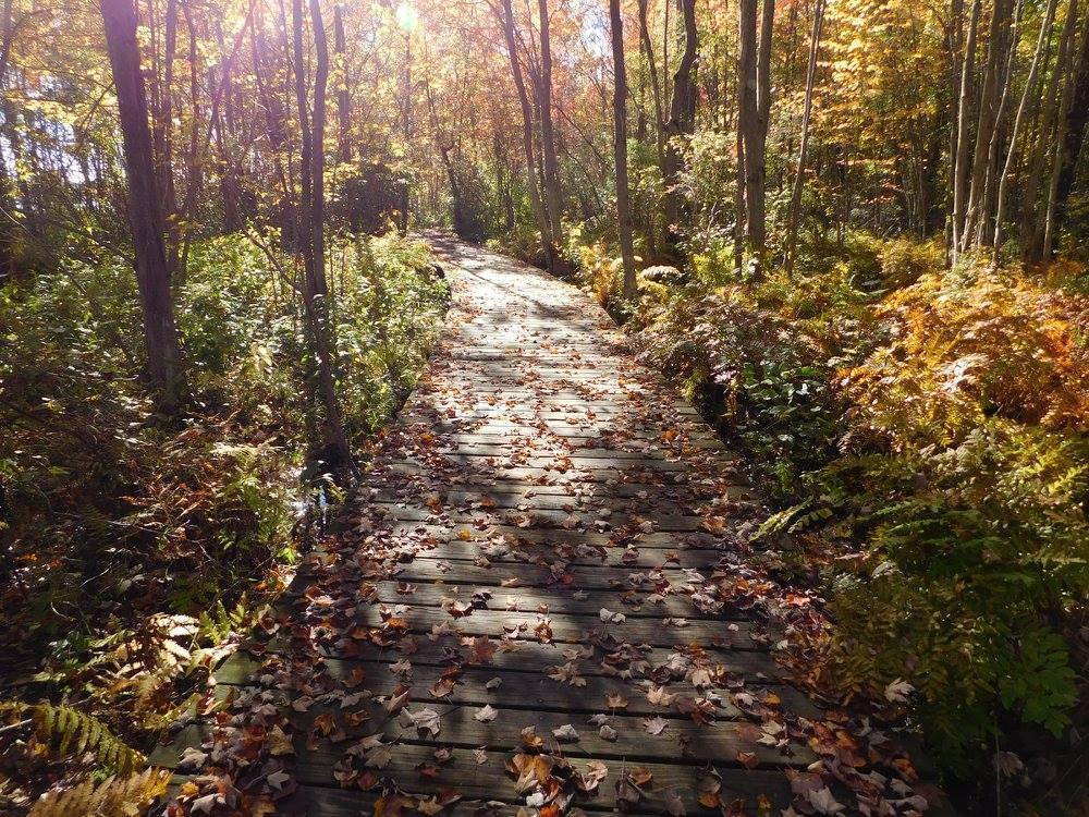 Beaver Lake Nature Center Hours