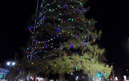Enjoy the Holidays with upcoming local festivities