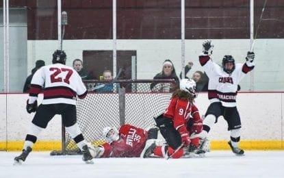 Cougars avenge lone defeat, top B'ville 5-2