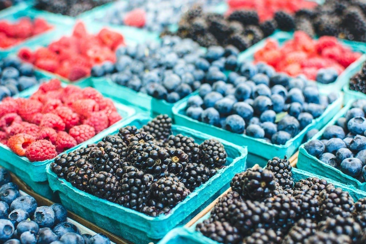 Local farms harvest new ideas from NY Produce Show