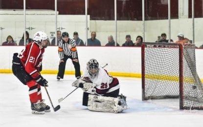 Hockey Bees drop OT semifinal to Syracuse