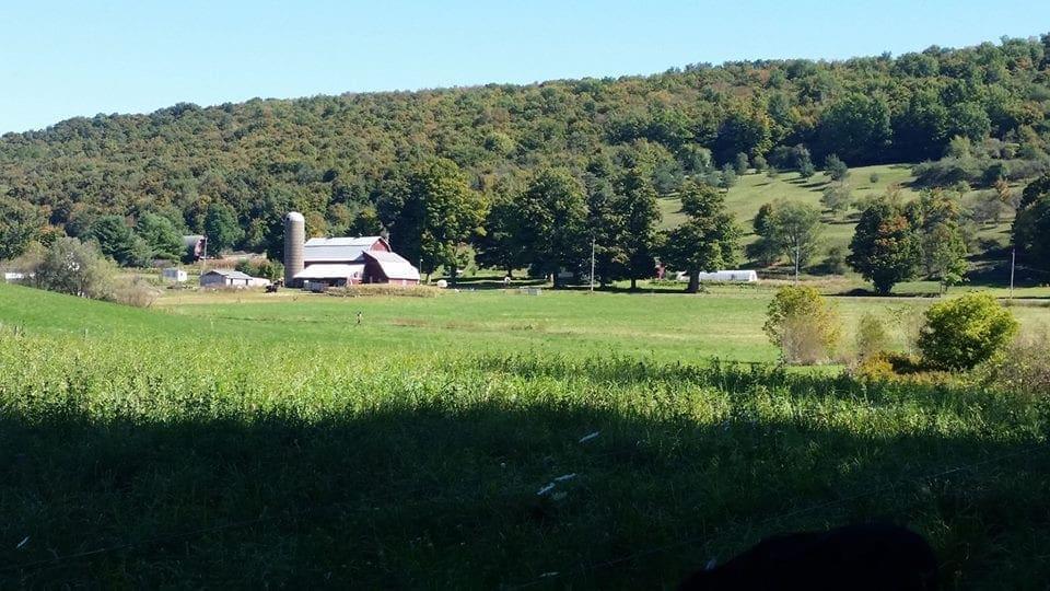 Creekside Meadows Farm kicks off 6th season