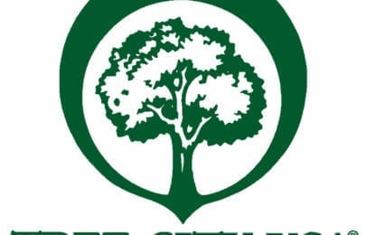 Fayetteville named a Tree City USA
