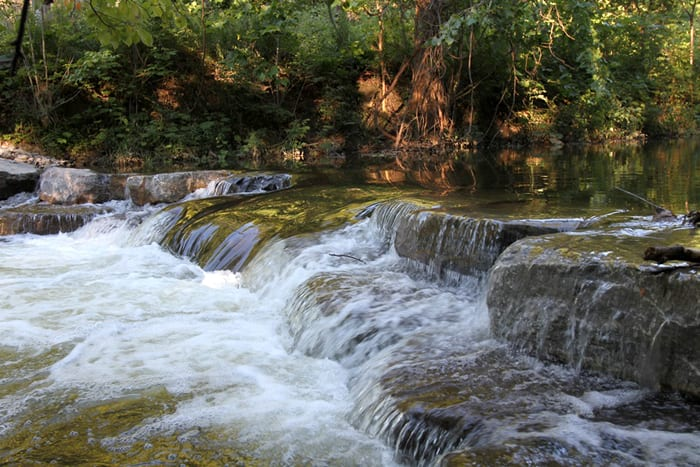 GUEST COLUMN: Madison County Trout Unlimited news