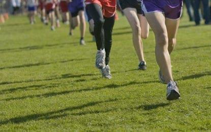 CBA runners shine at league cross country meet