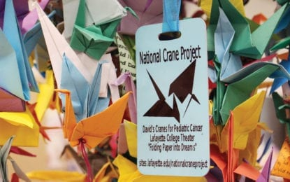 NOPL news: Cranes land at Cicero Library