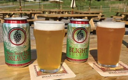 Regional craft brewers win awards at New York Craft Beer Competition