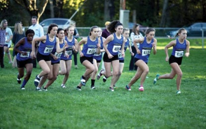 Cross country girls to compete for sectional title
