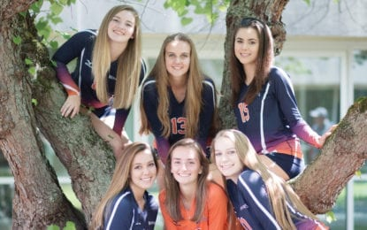 LHS volleyball teams to host Fall Craft Fair and Bazaar