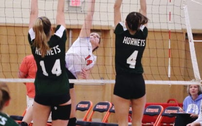 Liverpool girls volleyball reaches sectional final