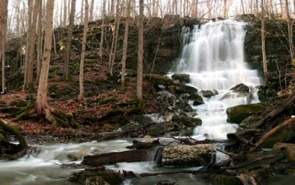 Manlius: Portion of Three Falls Woods taken over by CNY Land Trust