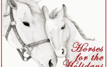 'Horses for the Holidays' expands to 10 counties