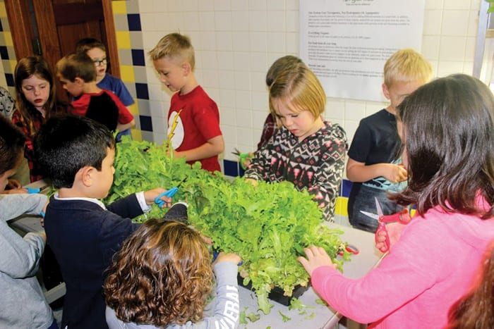 Caz students growing their own food