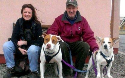 Volunteer of the Month: Carolin Murphy – Helping Hounds