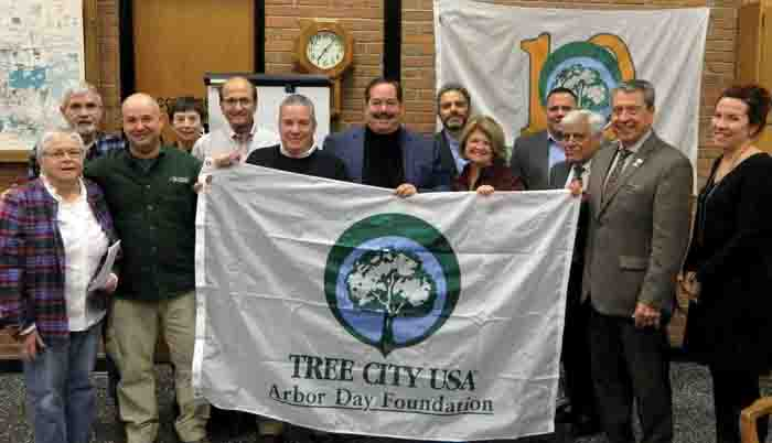 Manlius receives Tree City USA designation for 13th consecutive year
