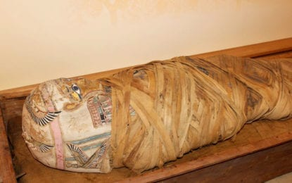 What do you know about Hen? Some history on the Cazenovia mummy