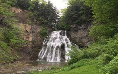 Delphi Falls property to become county park