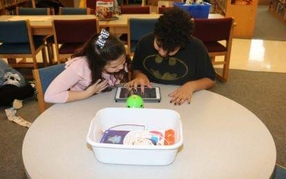 L'pool schools participate in 'Hour of Code'