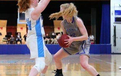 J-D girls basketball rips past ESM, Cortland