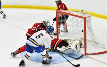 Hockey Wildcats stunned by B'ville in sectional epic