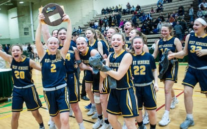 Girls basketball Wildcats reach state final four