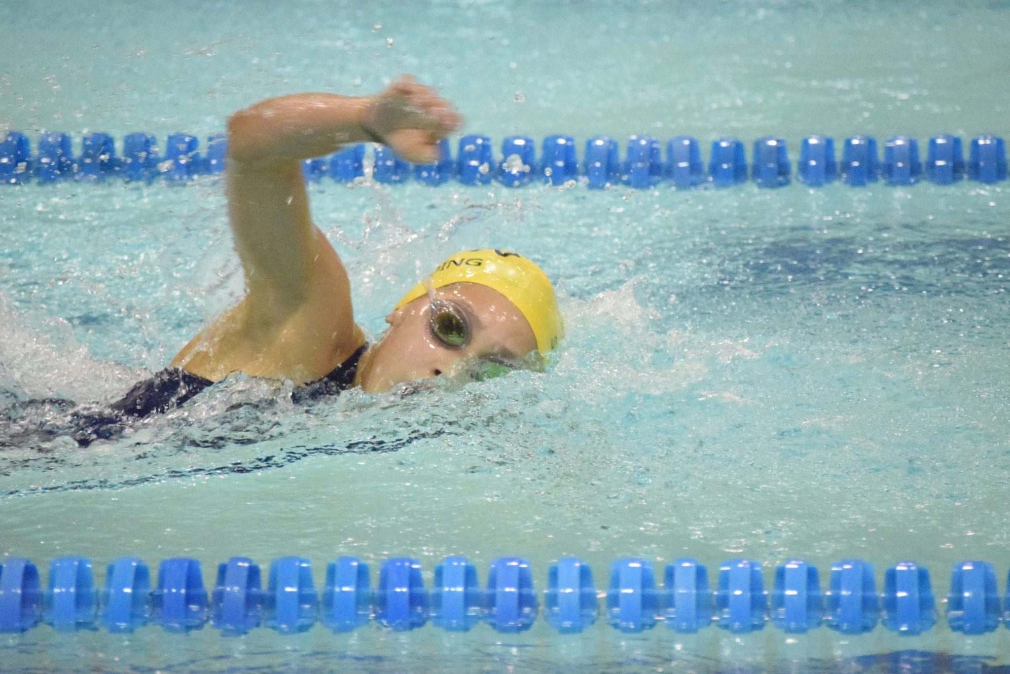 Lightning swim team has exceptional season