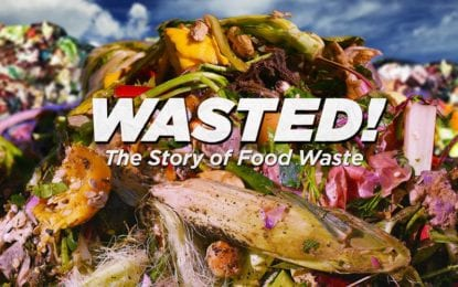 NOPL news: Cicero library hosts 'Wasted!' screening April 9