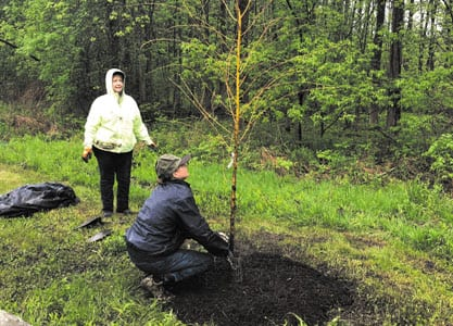 Over 60 trees planted at the Butternut Creek Recreation and Nature Trail in DeWitt