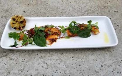 WHAT WE'RE EATING: Korean Chili Glazed Charred Octopus
