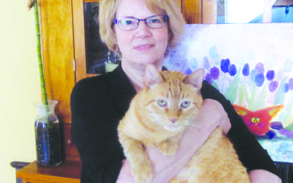 Gallery 54 to host Cranky Cats