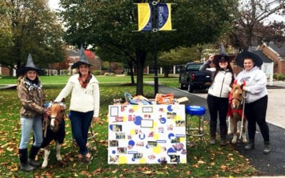 Cazenovia College's miniature horses will trick-or-treat for UNICEF