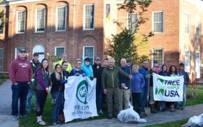 Cazenovia College takes part in community tree planting