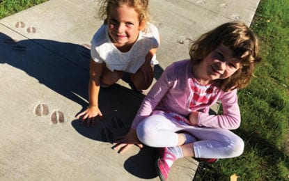 Manlius Pebble Hill School opens STEAM Park