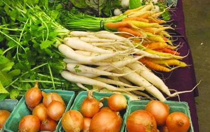 Winter farmers market returns to Baltimore Woods