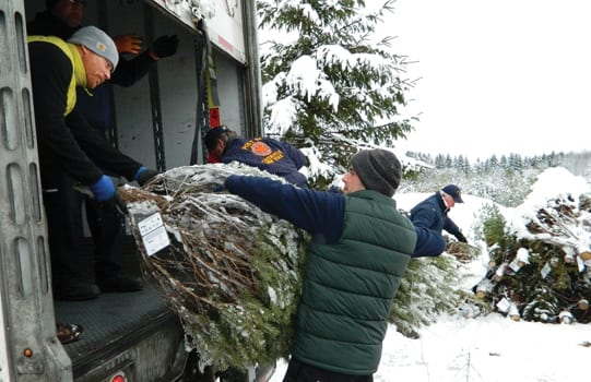 Trees for Troops makes annual pick-up stop at Critz Farms