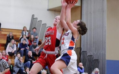 B'ville girls basketball fall to Liverpool in sectional quarterfinal